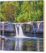 Mckinney Falls Wood Print