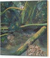 Mclane From The Bridge Wood Print