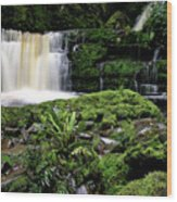 Mclean Falls In Southland New Zealand Wood Print
