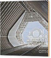 Mcmath-pierce Solar Observatory Wood Print