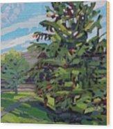 Mcmichael Spruce Wood Print
