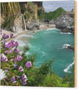 Mcway Falls Wood Print by Buck Forester