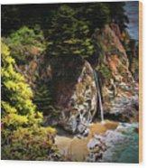 Mcway Falls Painting Wood Print