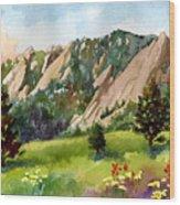 Meadow At Chautauqua Wood Print