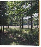 Meadow Beyond Wood Print