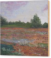 Meadow Creek - Late Summer Wood Print