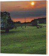 Meadow Field Wood Print