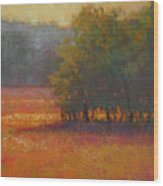 Meadow Glow Wood Print