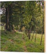 Meadow Grass Path Wood Print