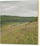 Meadow Green Wood Print