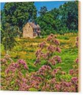 Meadow House At Longwood Wood Print