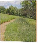 Meadow Path Wood Print