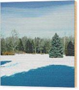 Meadow Snow Wood Print