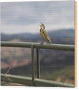 Meadowlark Sings Wood Print