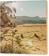 Meadows And Mountains Wood Print