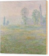 Meadows In Giverny Wood Print