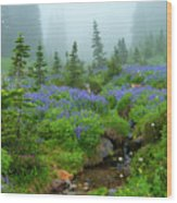 Meadows In The Mist Wood Print