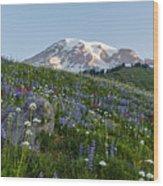 Meadows Of Glory Wood Print