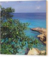 Meads Bay Wood Print