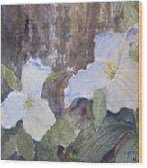 Meaghan's Trillium Wood Print