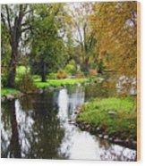 Meandering Creek In Autumn Wood Print