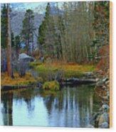 Meandering River Wood Print