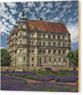 Mecklenburg Palace Wood Print