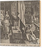 Medicine: Pl.6 Wood Print