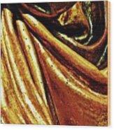 Medieval Folds   Wood Print