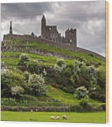 Medieval Rock Of Cashel Ireland Wood Print