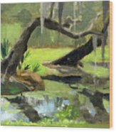 Meditative Swamp Wood Print