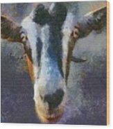 Mediterranean Goat Wood Print