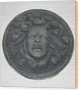 Medusa's Fury Wood Print