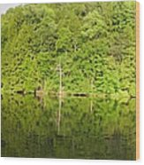 Mega Reflections Panorama Wood Print
