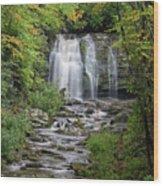 Meig Falls 7 Wood Print