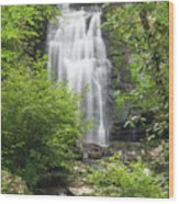 Meigs Falls 1 B Wood Print