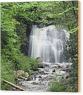 Meigs Falls Wood Print