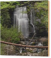 Meigs Falls One Wood Print
