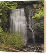 Meigs Falls Two Wood Print