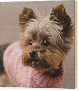Melanie In Pink Wood Print