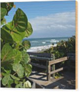 Melbourne Beach Florida Wood Print