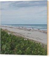 Melbourne Beach Florida November View Wood Print