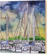 Melbourne Florida Marina Wood Print