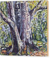 Melch Wood Print