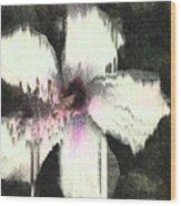 Melting Hibiscus Wood Print