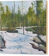 Melting Snow At Umea Norrbotten Sweden 2002   Wood Print