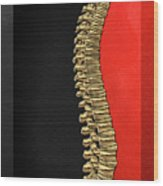 Memento Mori - Gold Human Backbone Over Black And Red Canvas Wood Print