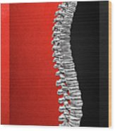 Memento Mori - Silver Human Backbone Over Red And Black Canvas Wood Print