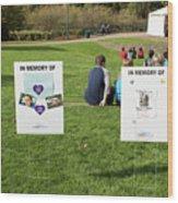 Memorials And Outdoor Bands Wood Print