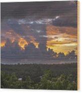 Memories Of Matapalo Wood Print